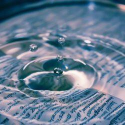 Infos zum Transparenzregister
